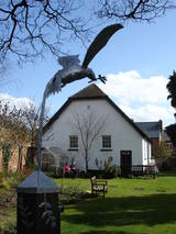 Dove Above Meeting House (103 kbytes) - Click to enlarge