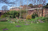View across the garden towards the Community Centre (122 kbytes) - Click to enlarge